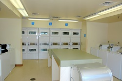 Disneys pop century resort walt disney world laundry rooms now make use of a technology called laundryview which displays washer and dryer availability on their website publicscrutiny Images